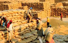 With P-PAS paddy payments are on time in Odisha