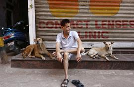 First serious dog count in India begins in Delhi