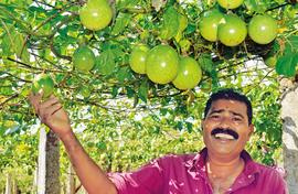 Kerala is crazy about passion fruit
