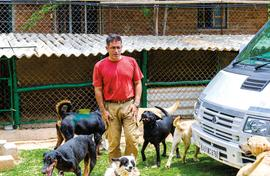 India's Dog Father has saved close to 8000 dogs
