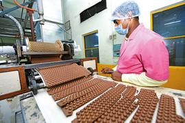 Campco's areca nut farmers turn to chocolate