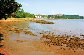 Marina becomes a Goan fishing village's nightmare